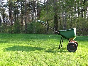 Spreader used for grass seed, overseeding.