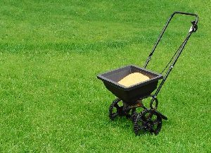 Push fertilizer spreader on green lawn.