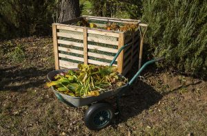 Image of compost bin in the autumn garden